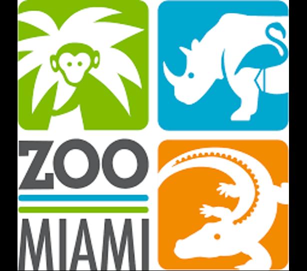 Cardenalitos desde el SCBI al Zoo Miami
