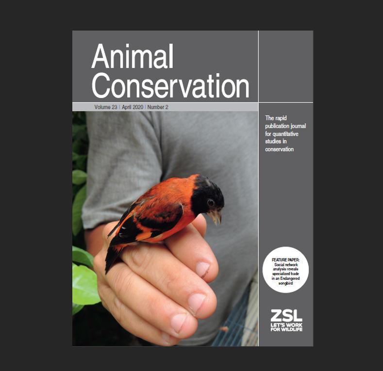 El cardenalito en la portada de Animal Conservation