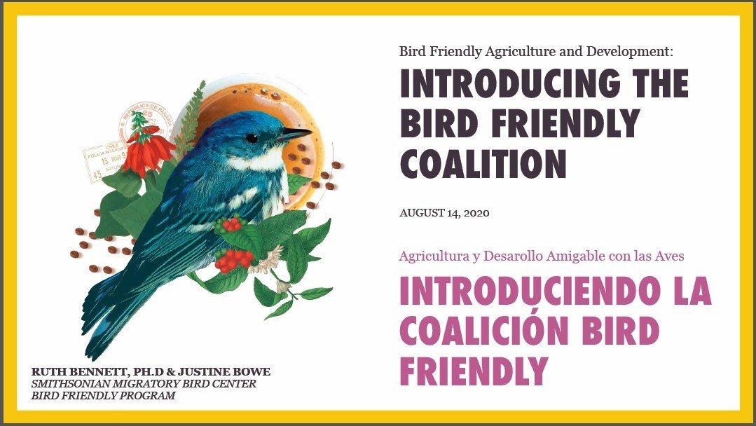 ¡La Iniciativa Cardenalito se une a la Coalición Amigable a las Aves!