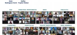 IC participó en la Iniciativa de Manejo de Grupos